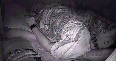 Homem verifica porque não consegue dormir; e sua câmera de segurança lhe surpreende.